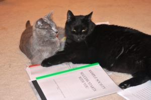 Karma and Becket grading finals.