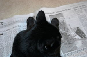 Becket reading the newspaper